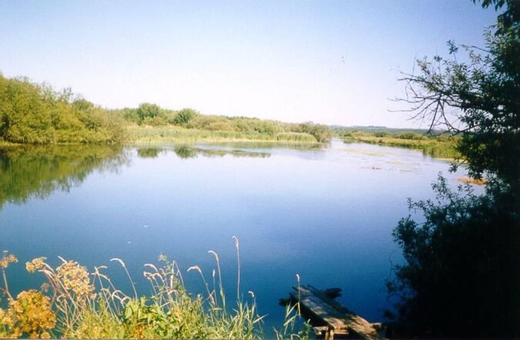 рыбалка большемурашкинский район